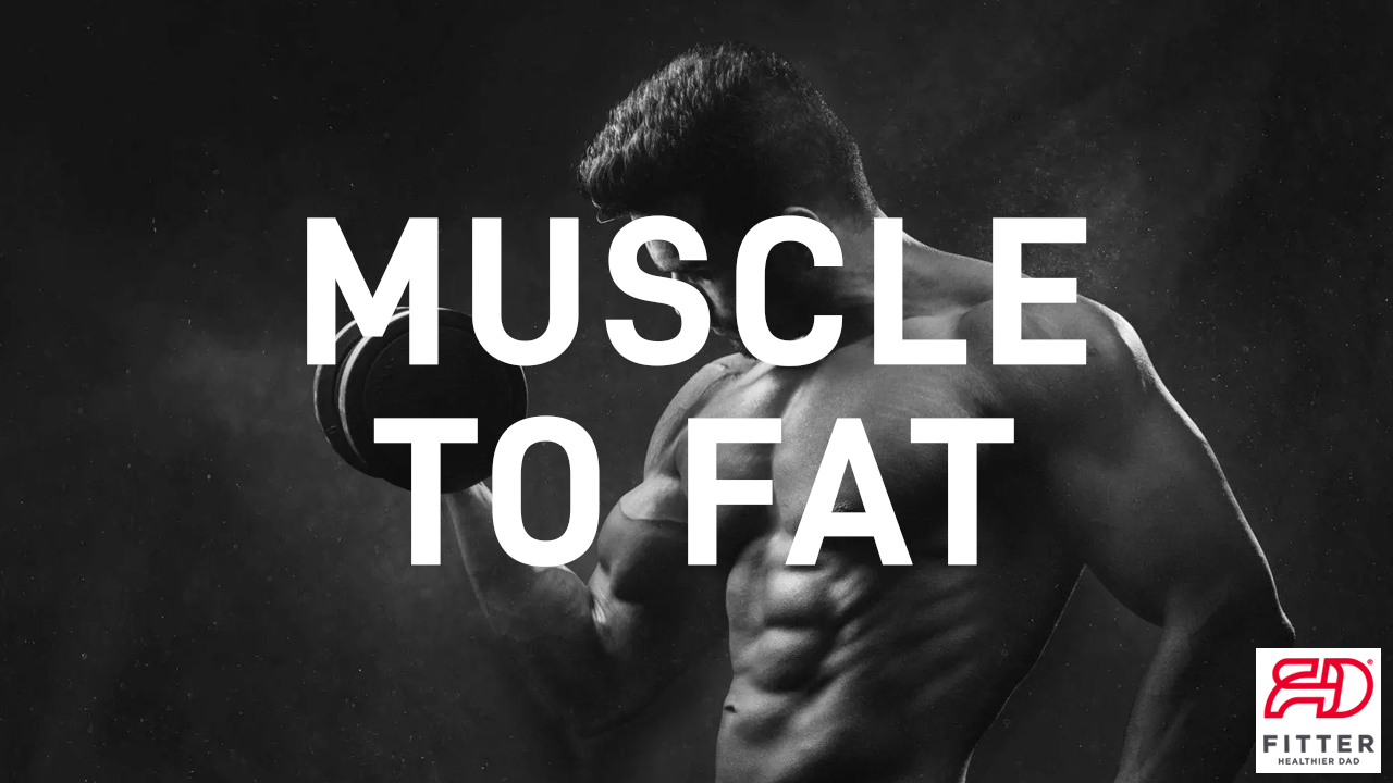 muscle to fat